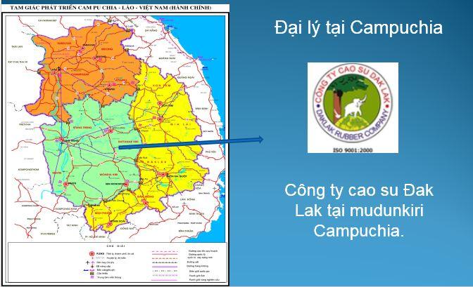 Đại lý tại Campuchia